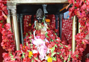 গড়িয়াহাটের প্রখ্যাত ডাকাত কালী বাড়ির দর্শন করেনিন